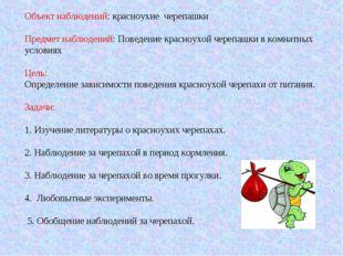Объект наблюдений: красноухие черепашки Предмет наблюдений: Поведение красноу