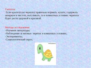 Гипотеза: Если красноухую черепаху правильно кормить, купать, содержать аквар