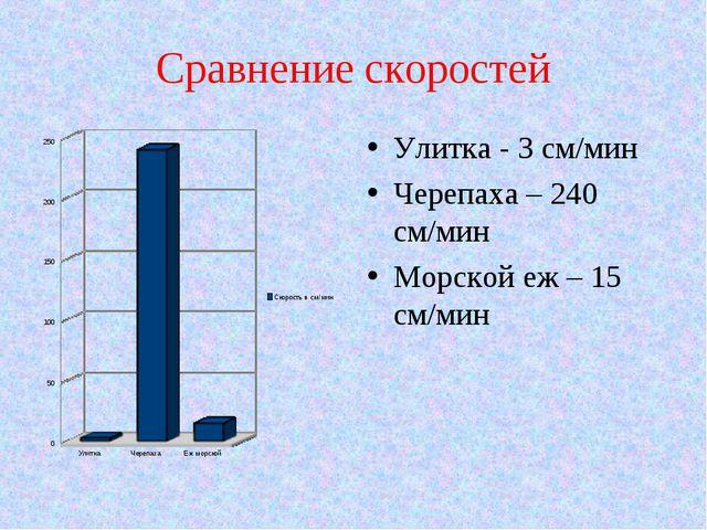 Сравнение скоростей Улитка - 3 см/мин Черепаха – 240 см/мин Морской еж – 15 с...