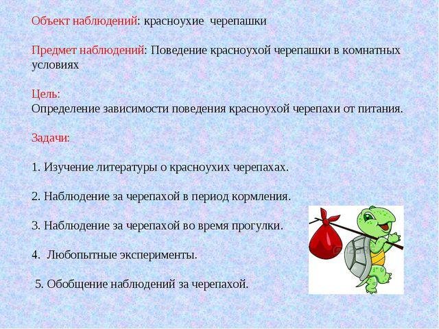 Объект наблюдений: красноухие черепашки Предмет наблюдений: Поведение красноу...