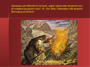 Однажды шел Моисей по пустыне , вдруг перед ним загорелся куст. Из пламени ра