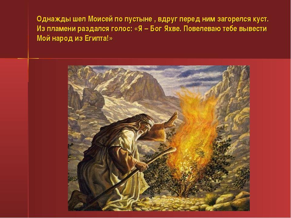 Однажды шел Моисей по пустыне , вдруг перед ним загорелся куст. Из пламени ра...