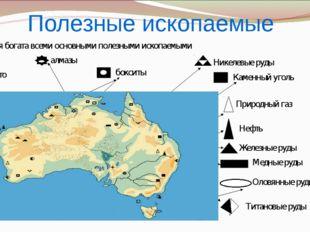 Полезные ископаемые Никелевые руды алмазы Каменный уголь Природный газ Нефть