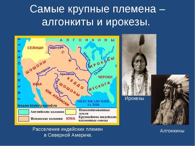 Самые крупные племена – алгонкиты и ирокезы. Расселение индейских племен в Се...