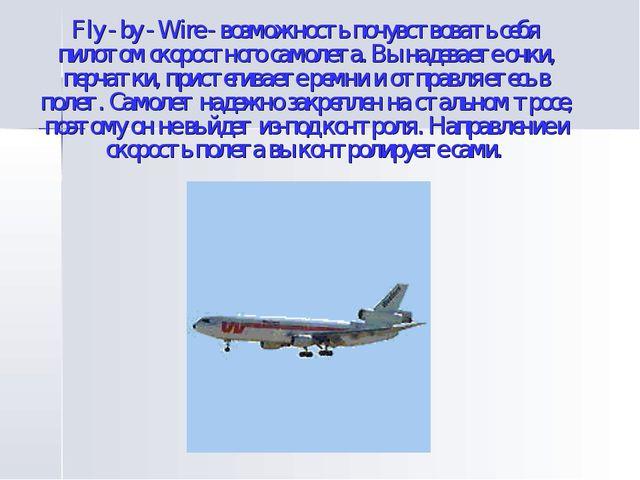 Fly - by - Wire - возможность почувствовать себя пилотом скоростного самолета...