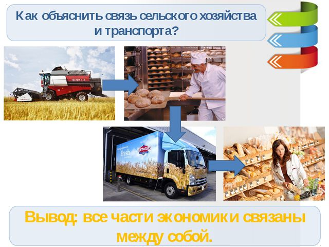 Как объяснить связь сельского хозяйства и транспорта? Вывод: все части эконом...