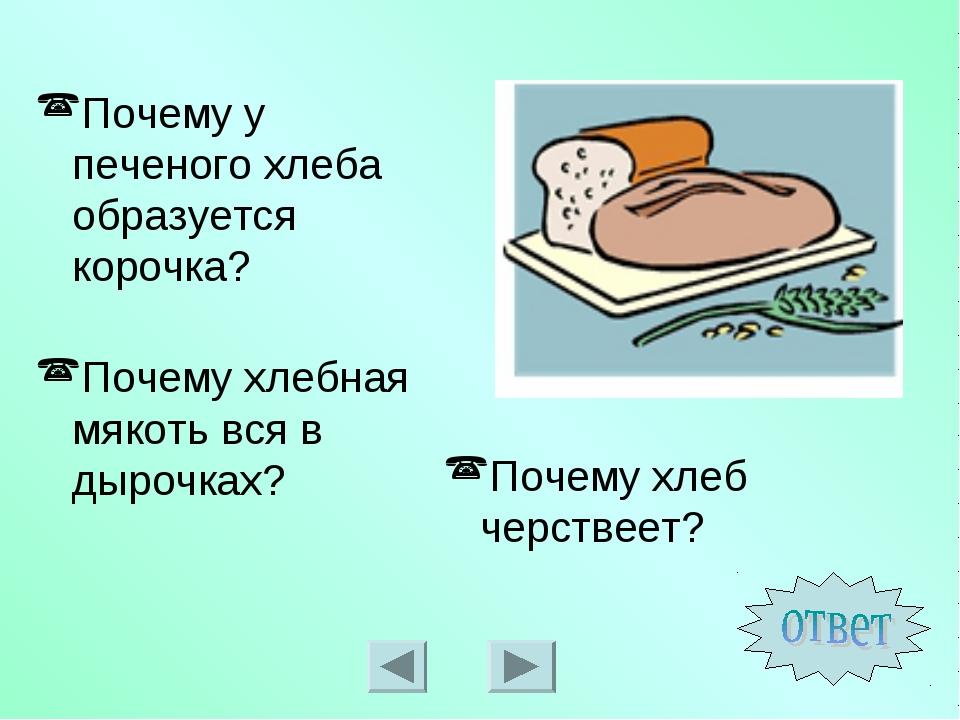 Почему у печеного хлеба образуется корочка? Почему хлеб черствеет? Почему хле...