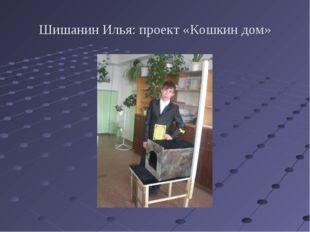 Шишанин Илья: проект «Кошкин дом»