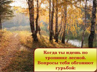 Когда ты идешь по тропинке лесной. Вопросы тебя обгоняют гурьбой: Попкова Т.В
