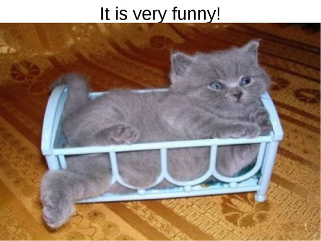 It is very funny!