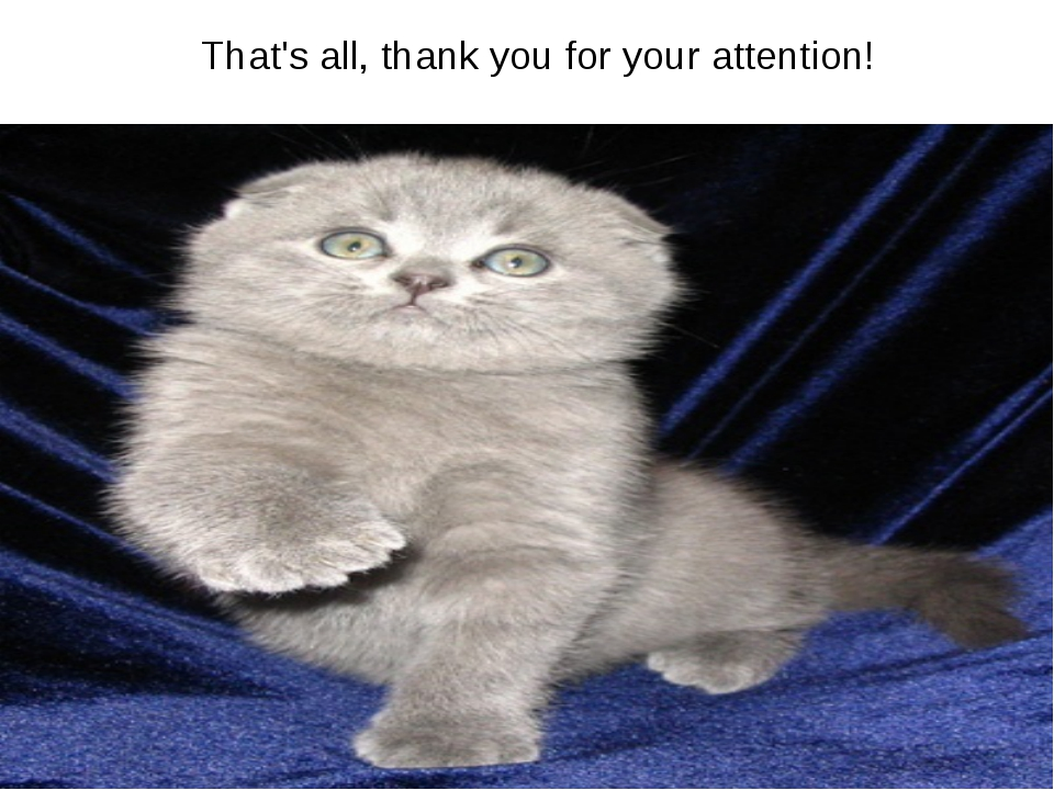 That's all, thank you for your attention!