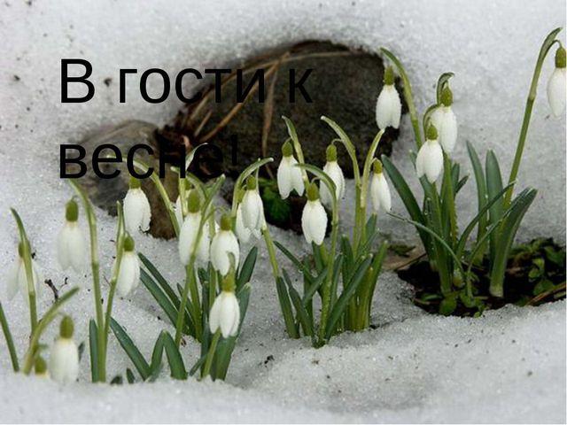 В гости к весне!