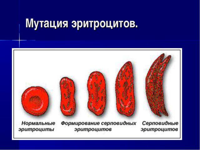 Мутация эритроцитов.
