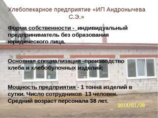 Хлебопекарное предприятие «ИП Андронычева С.Э.» Форма собственности - индивид