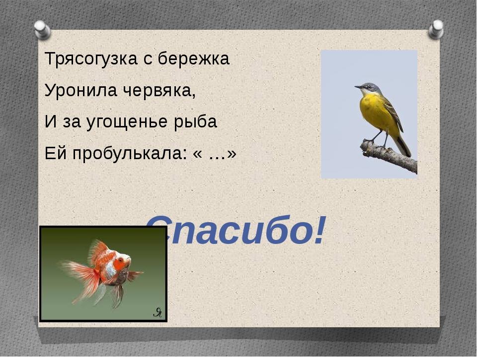 Трясогузка с бережка Уронила червяка, И за угощенье рыба Ей пробулькала: « …»...