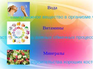 Вода Витамины Минералы самое важное вещество в организме человека участвуют в