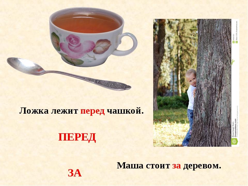Ложка лежит перед чашкой. Маша стоит за деревом. ПЕРЕД ЗА