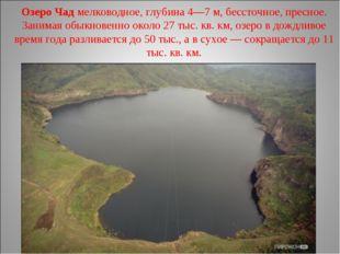 Озеро Чад мелководное, глубина 4—7м, бессточное, пресное. Занимая обыкновенн