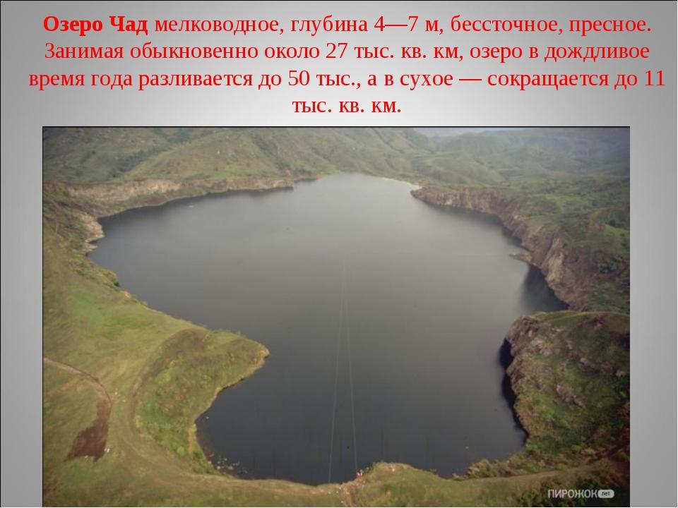 Озеро Чад мелководное, глубина 4—7м, бессточное, пресное. Занимая обыкновенн...