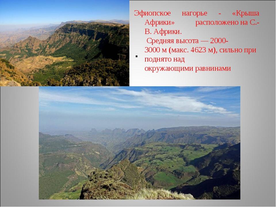 . Эфиопское нагорье - «Крыша Африки» расположенонаС.-В.Африки. Средняяв...
