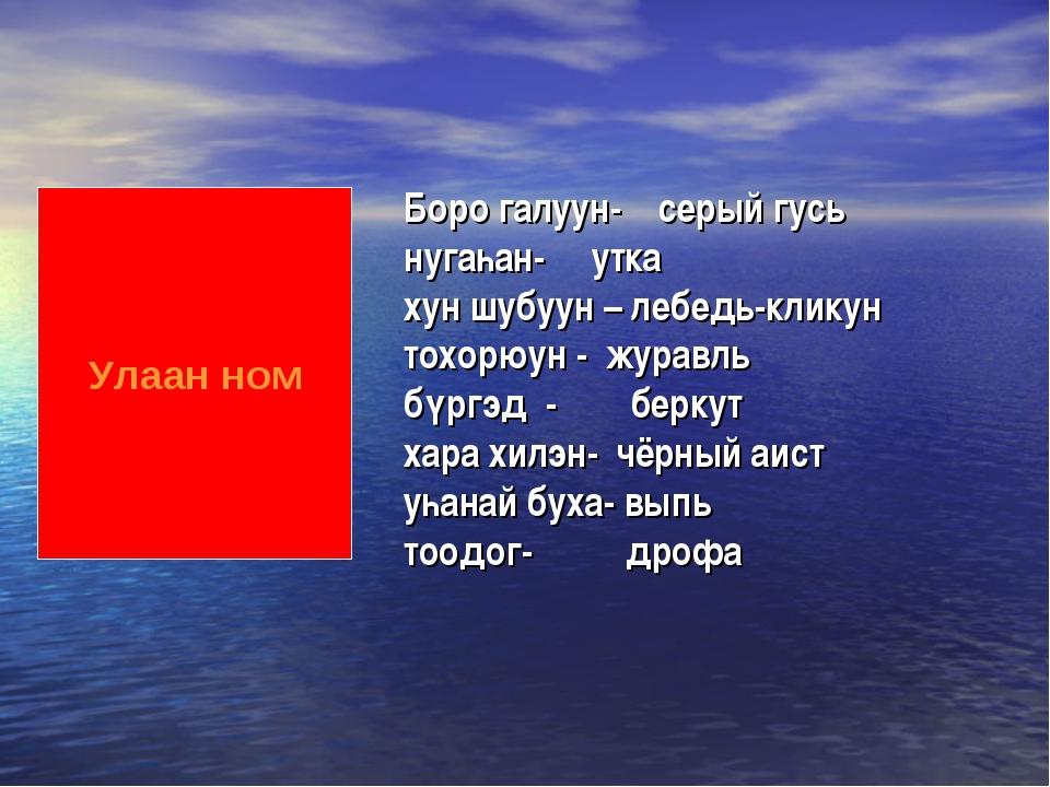 Улаан ном Боро галуун- серый гусь нугаһан- утка хун шубуун – лебедь-кликун то...