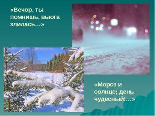 «Мороз и солнце; день чудесный!…» «Вечор, ты помнишь, вьюга злилась…»