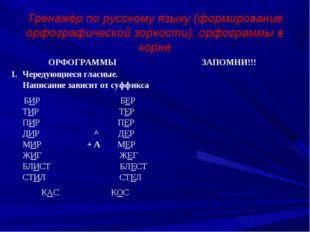 Тренажёр по русскому языку (формирование орфографической зоркости): орфограм