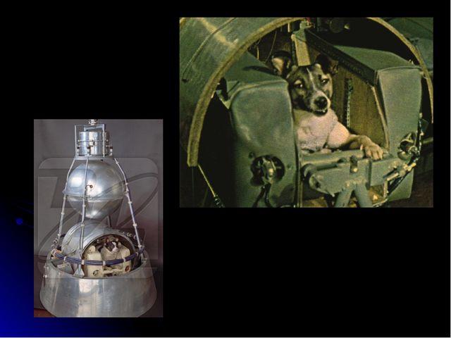 3 ноября 1957 года Лайка Второй искусственный спутник Земли