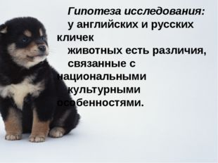 Гипотеза исследования: у английских и русских кличек животных есть различия,