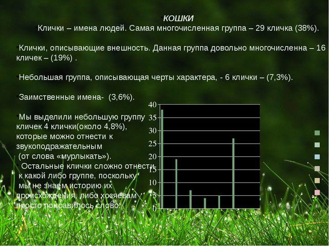 КОШКИ Клички – имена людей. Самая многочисленная группа – 29 кличка (38%). Кл...