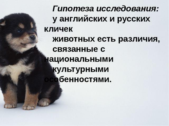 Гипотеза исследования: у английских и русских кличек животных есть различия,...