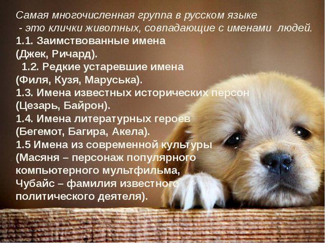 Самая многочисленная группа в русском языке - это клички животных, совпадающи...