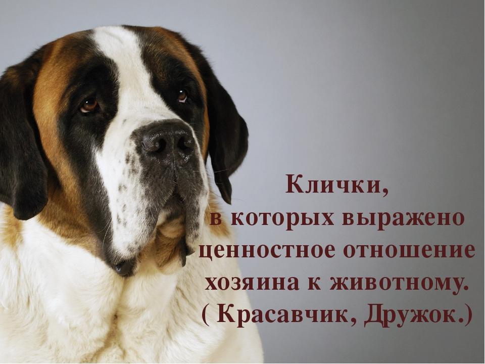 Клички, в которых выражено ценностное отношение хозяина к животному. ( Красав...