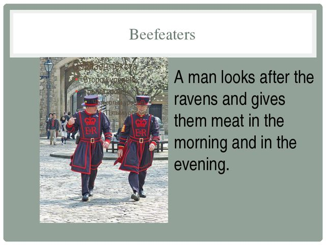 Beefeaters A man looks after the ravens and gives them meat in the morning an...