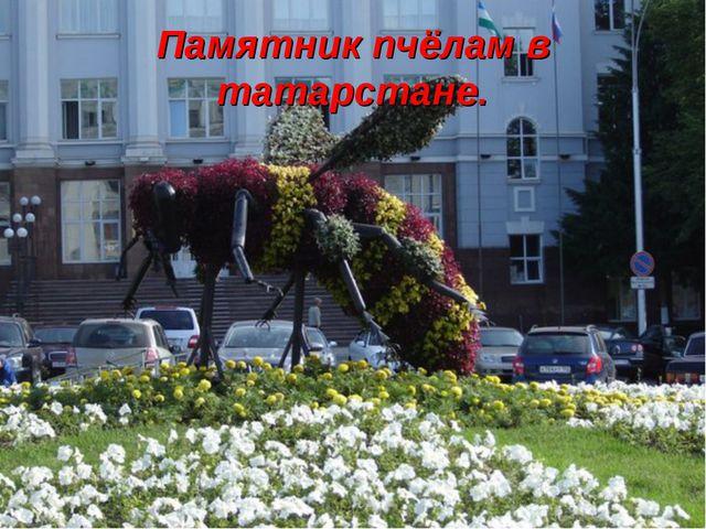 Памятник пчёлам в татарстане.