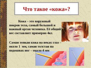 Что такое «кожа»? Кожа – это наружный покров тела, самый большой и важный ор