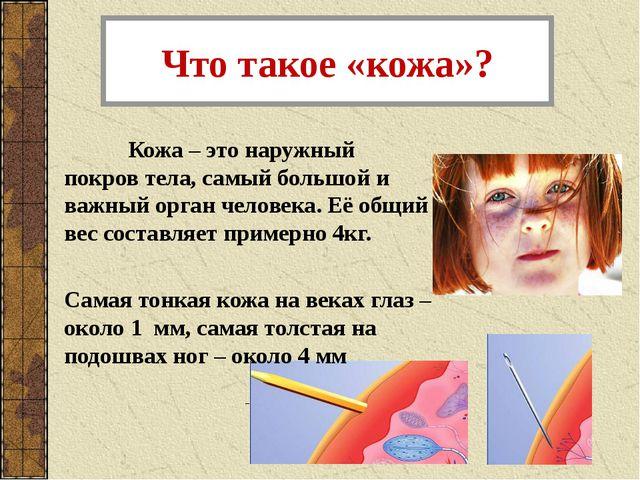 Что такое «кожа»? Кожа – это наружный покров тела, самый большой и важный ор...