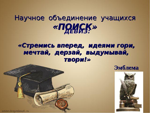 Научное объединение учащихся «ПОИСК» ДЕВИЗ: «Стремись вперед, идеями гори, ме...