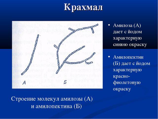 Крахмал Строение молекул амилозы (А) и амилопектина (Б) Амилоза (А) дает с йо...