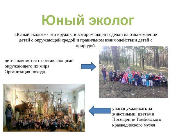 «Юный эколог» - это кружок, в котором акцент сделан на ознакомление детей с о...