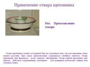 Применение отвара щитовника Отвар щитовника готовят на водяной бане на медлен