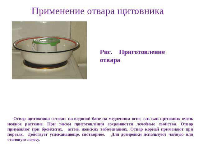 Применение отвара щитовника Отвар щитовника готовят на водяной бане на медлен...