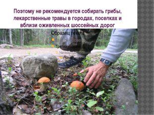 Поэтому не рекомендуется собирать грибы, лекарственные травы в городах, посел