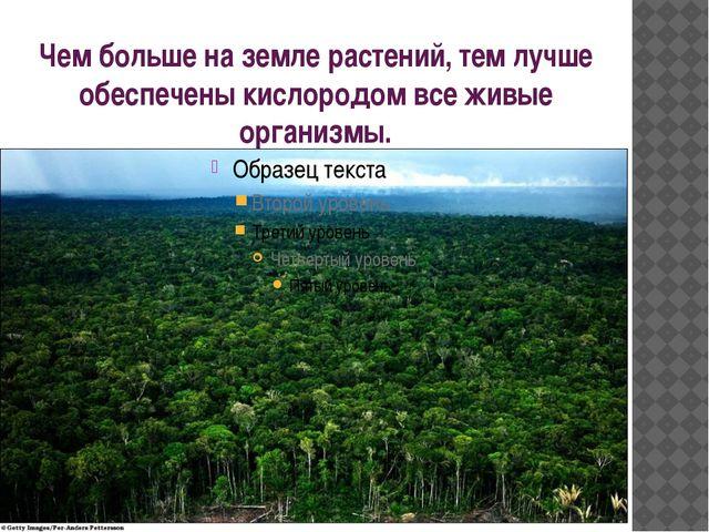 Чем больше на земле растений, тем лучше обеспечены кислородом все живые орган...