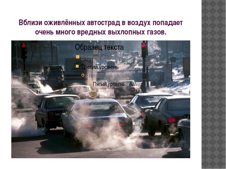 Вблизи оживлённых автострад в воздух попадает очень много вредных выхлопных г...