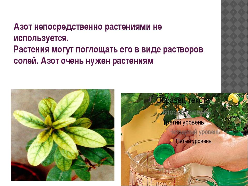 Азот непосредственно растениями не используется. Растения могут поглощать его...