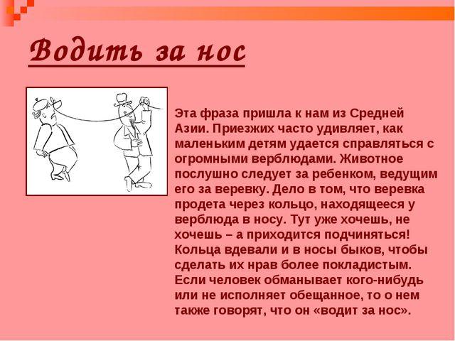 Водить за нос Эта фраза пришла к нам из Средней Азии. Приезжих часто удивляет...