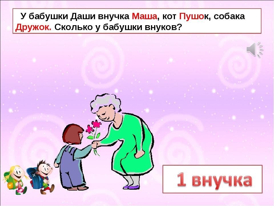 У бабушки Даши внучка Маша, кот Пушок, собака Дружок. Сколько у бабушки внук...