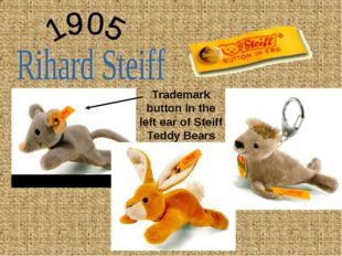 Trademark button in the left ear of Steiff Teddy Bears
