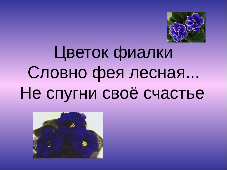 Цветок фиалки Словно фея лесная... Не спугни своё счастье